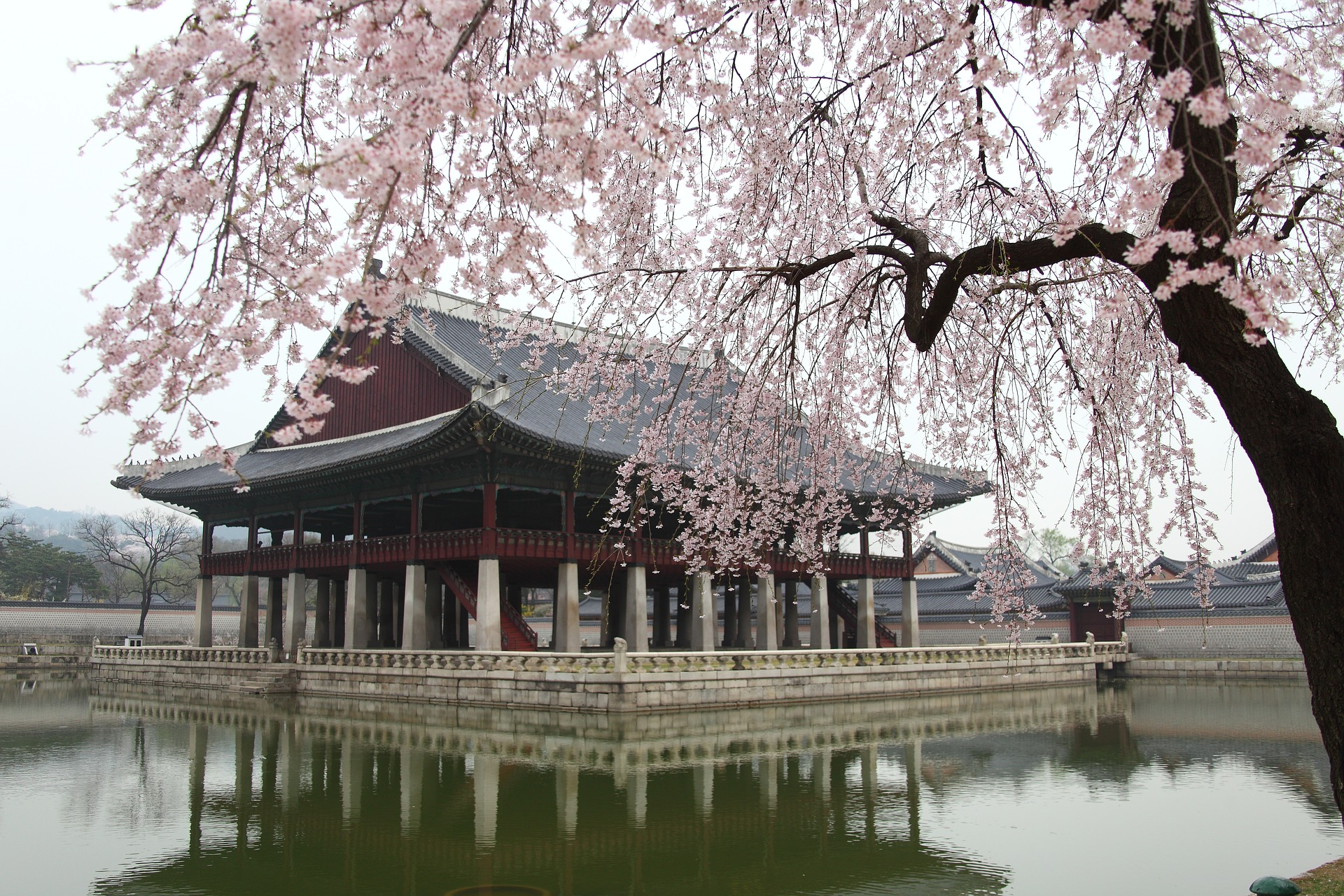 Cheap Business Class Tickets To Seoul