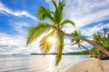 Royalton Punta Cana Resort & Casino (All-Inclusive)